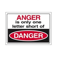 anger_danger-8407